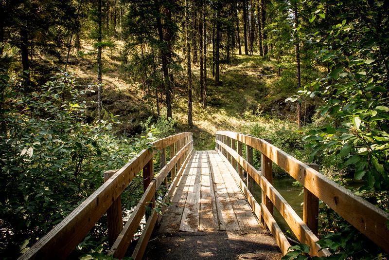 Bridge2-6699.jpg