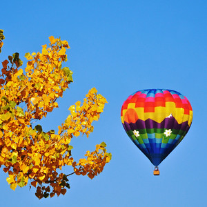 Balloons - Chatfield S.P. - Oct. 2011