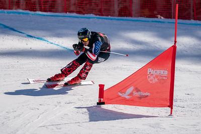 2019 FIS World Championships SX Training