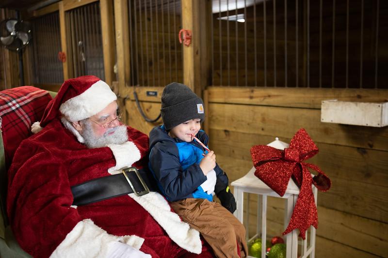FPC_Horses and Holidays_2019_ ATC99457.jpg