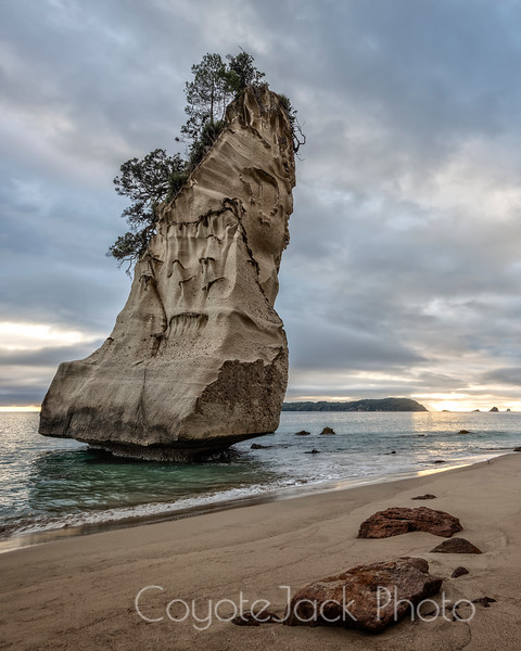 Cathedral Cove seastack