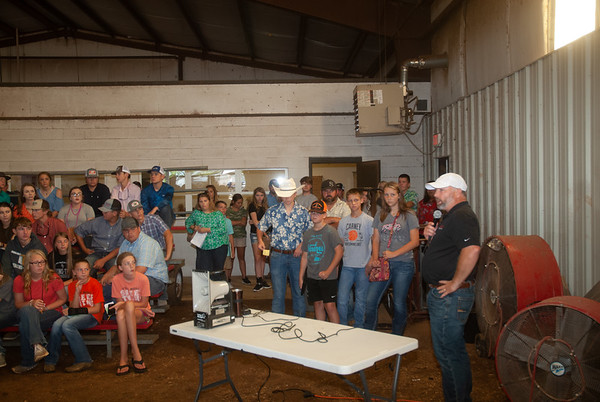 2019 NOC SHEEP FIELD DAY
