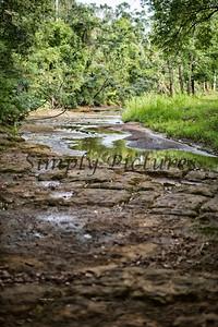 Banita Creek  (25)