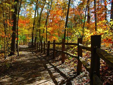 North Carolina Arboretum ~ Asheville, North Carolina