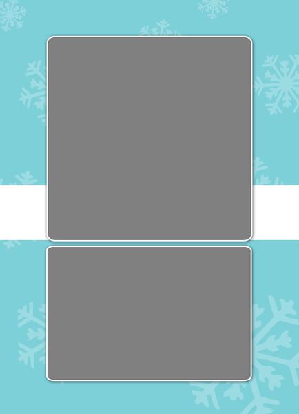 Falling Snow_5x7 2-Sided Card_02.jpg