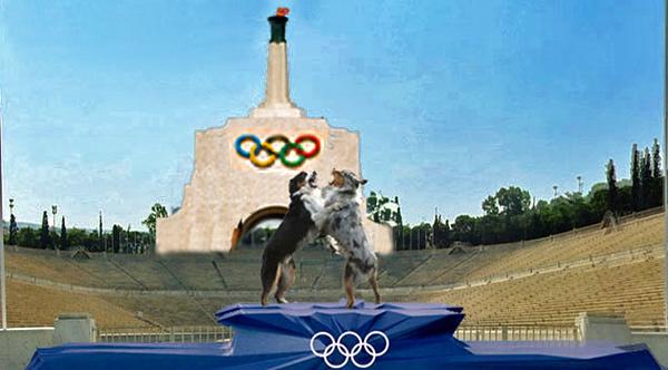 OlympiadGaWy2_650x360.jpg