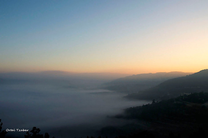 fog11.jpg