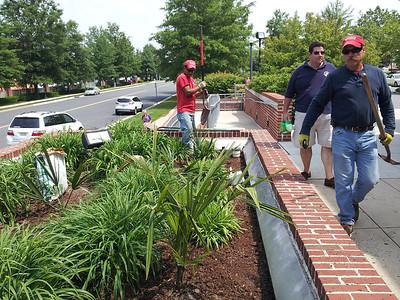 Virginia Palm Society 1st Municipal Planting of Hardy Palms May 28, 2013