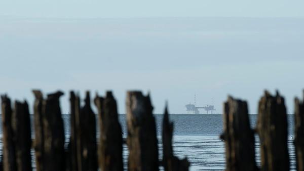 Waddenkust en Lauwersmeer