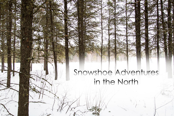 Snowshoe Adventures in the North