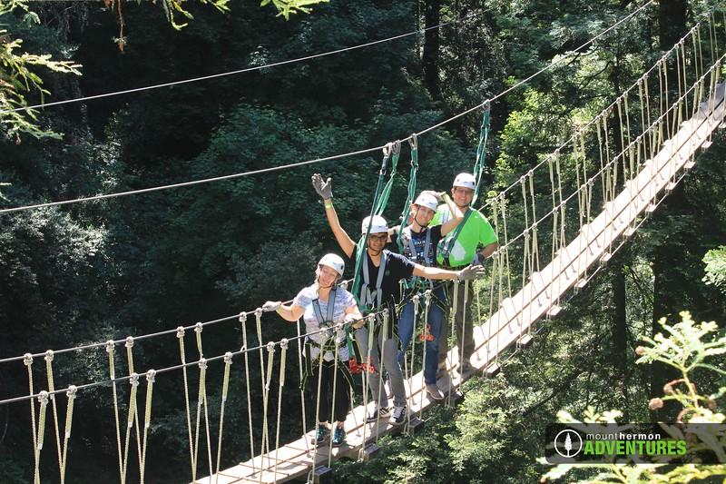 redwood_bridge_1528411632956.jpg