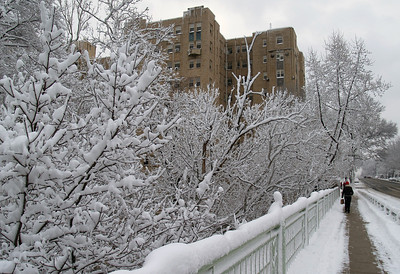 Snow Day, February 11, 2006.