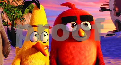 movie-review-angry-birds-movie-will-have-you-seeing-red
