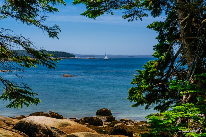 Idyllic afternoon along the coastal shore