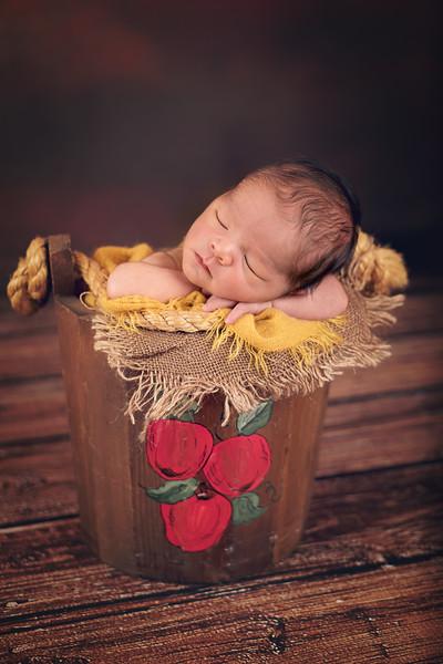 newborn-photographer-theme-4420 Fix.jpg