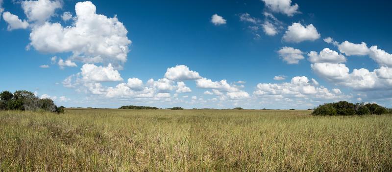 Everglades-79-Pano i3.jpg