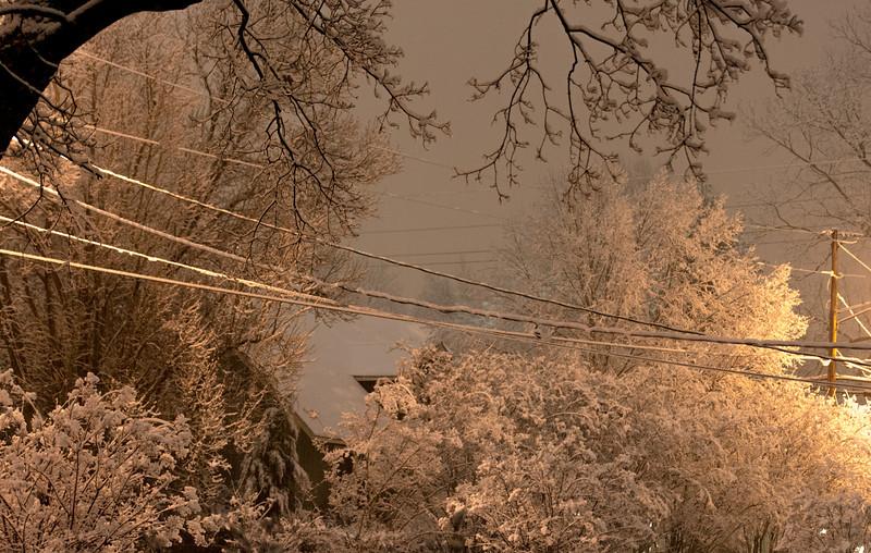20140212-snow-DSC_4552.jpg