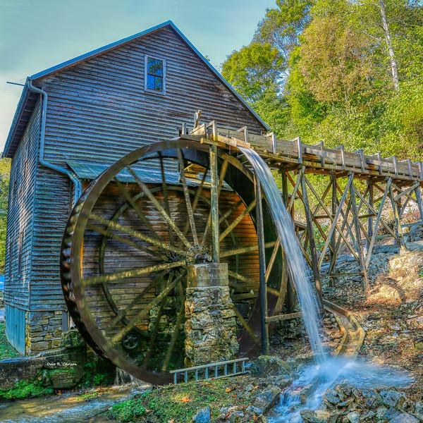 Bush Mill Day