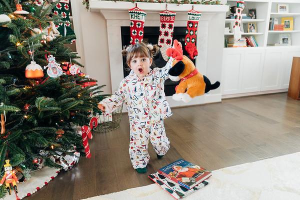 A Bouvier Christmas