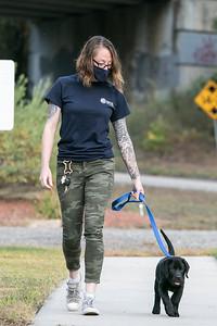 veterans service dog 092420