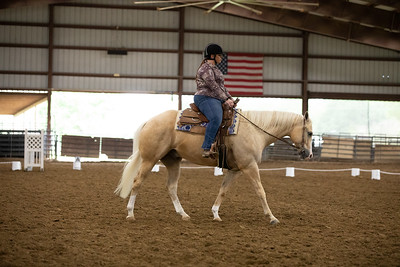 Horse 22