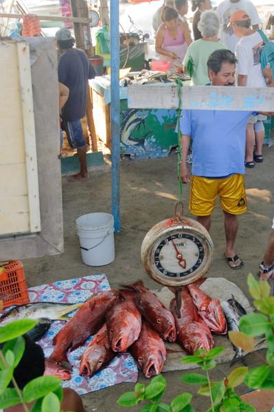 Zihua FIsh Market