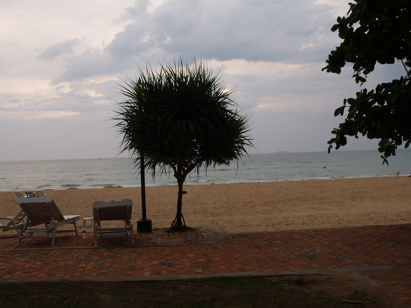 Et tre, noen stoler, en strand. Intet spesielt. --- A tree, some chairs and a beach. Nothing special. (Foto: Geir)