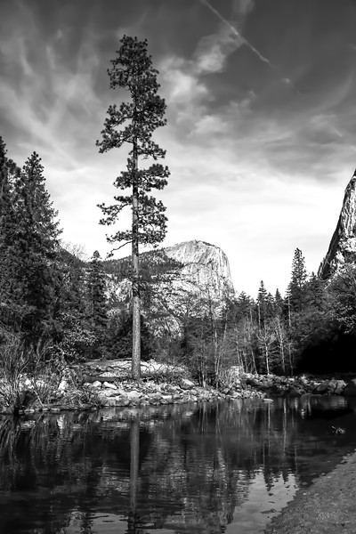 Sierra Treasure