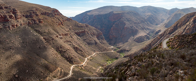 The rugged Swartberg mountains – can you imagine actually building this road?