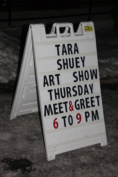 Artist Meet and Greet, Tara Shuey, Community Arts Center, Tamaqua (1-30-2014)