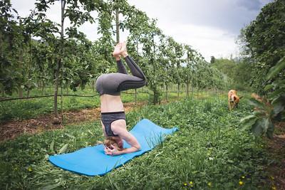 Yoga Verger