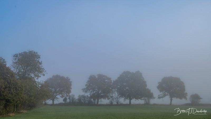 Hassocks in the mist-5444.jpg