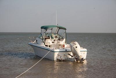 Audubon Boat