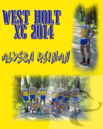 Cross Country Collages