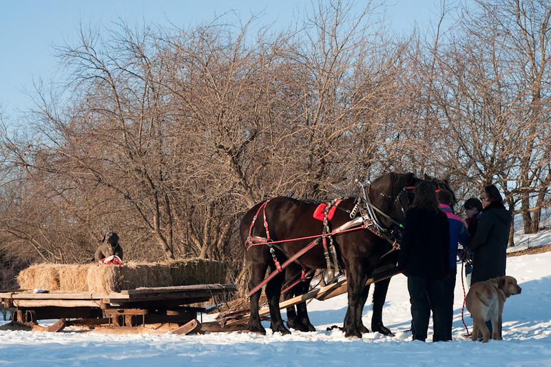 HorseRide-28.jpg