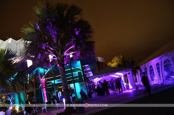 SFF Sarasota Film Festival