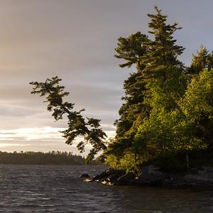 Beauty at the Lake