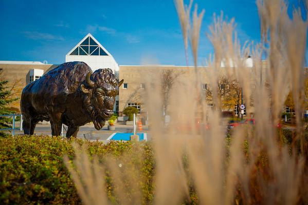 14212 Exteriors, North Campus, CFA, Buffalo