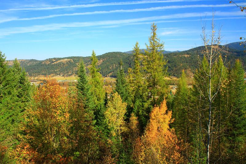 fall 2015-7221.jpg