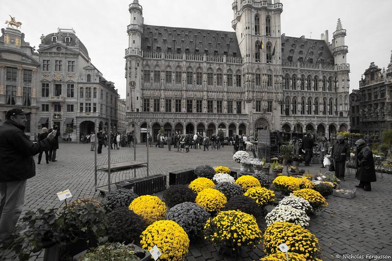 Brussels October 09 - IMG_8603.jpg