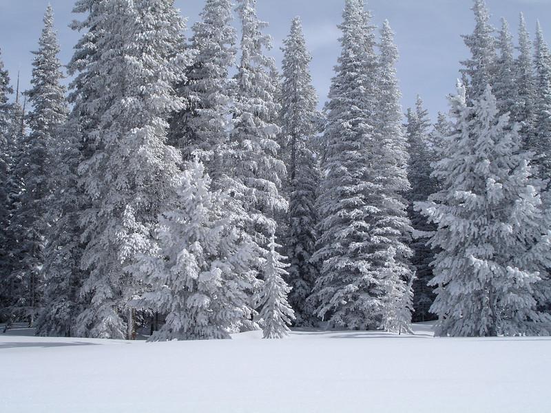 snowmass 6.jpg