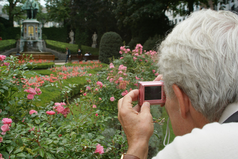 A rose garden in Brussels.