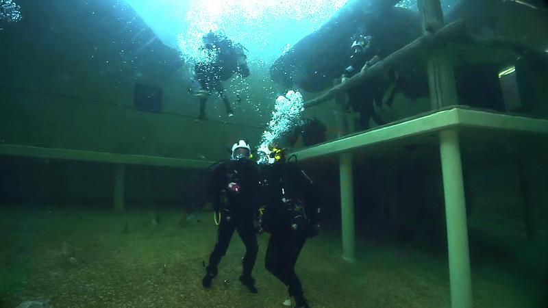 Underwater Walk Edit 45secs.00_00_11_09.Still014.jpg