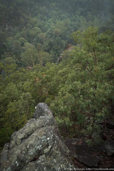 Views of Marramarra Creek