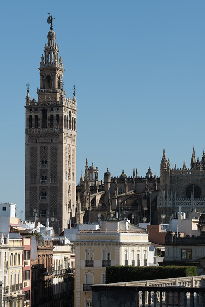 Seville April 2019 - XT3 Card 1 (ii)-229.jpg