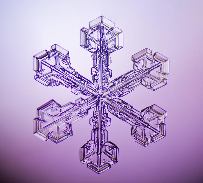 Snowflake-0665-Edit.jpg