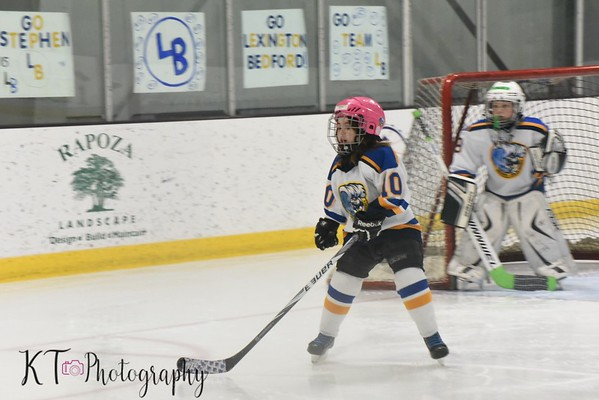 WJHA Mite B - Falmouth Tournament - 2/24/19