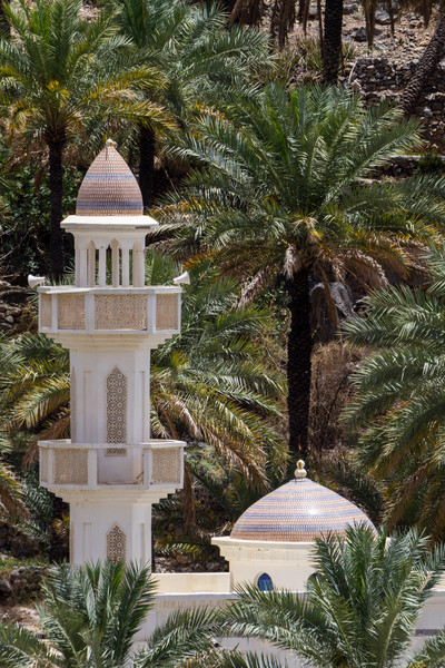Minaret in front of date palm trees - Oman