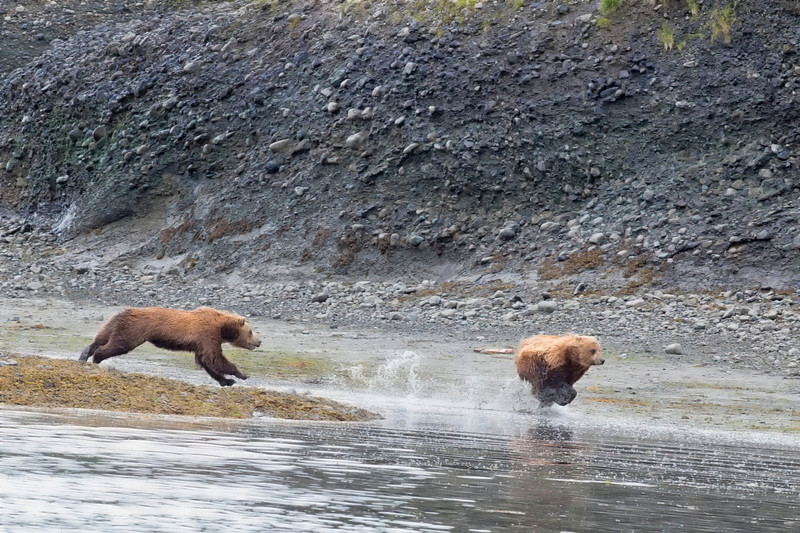 Alaska_2013_FH0T4281.jpg