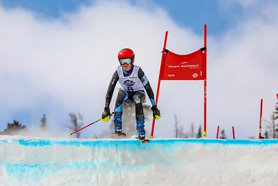 Dual Parallel Slalom